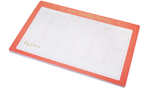 by-sainsburys-coral-large-desk-planner-4